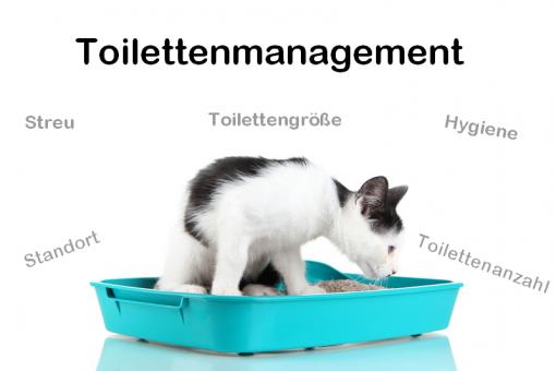 manage121