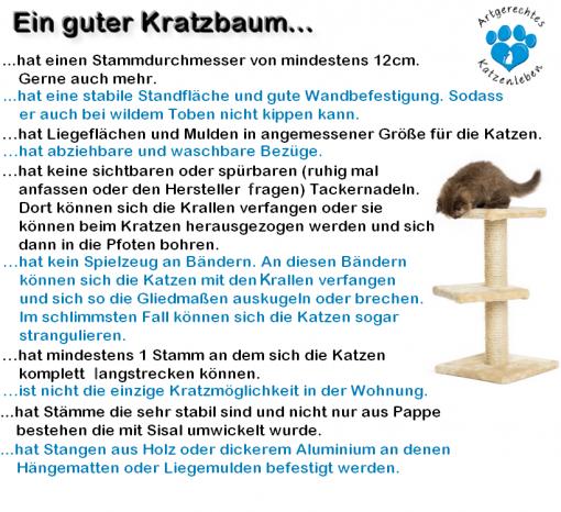 Kratzbaum regeln